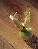 Eine einzelne Tomatillo auf Holzuntergrund