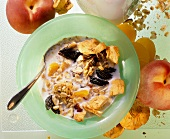 Granola with Dried Apricots and Plums