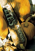 Pumpkin Still Life with Sign