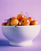 A Bowl of Fresh White Cherries