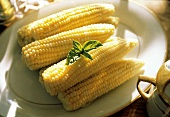 Corn on the Cob on a Platter