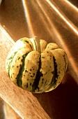 Ein gelb-grüner Kürbis (Sweet Dumpling Squash)