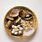 Assorted Mushrooms in a Basket