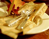 Flatware on a Cloth Napkin with Leaves