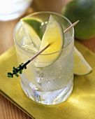 A Glass of Gin and Tonic with Lime Wedges