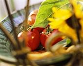 Frische Tomaten in einer Schale mit Sonnenblume