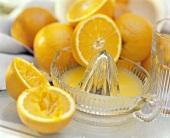 Orangen mit frisch gepresstem Orangensaft in Zitruspresse