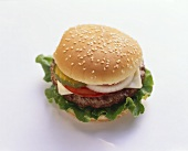 Cheeseburger on a Sesame Seed Bun