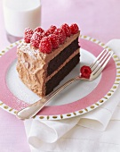 A Slice of Devil's Food Cake with Raspberries