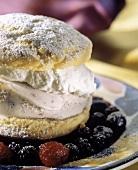 Berry Shortcake with Powdered Sugar