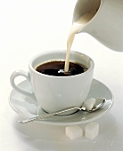 Cream Pouring From a Pitcher into a Cup of Coffee
