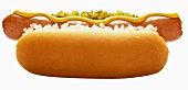 A Hot Dog in a Bun with Mustard and Onion; Relish