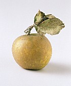 One Whole Golden Apple with Leaves
