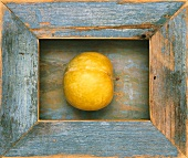 A Yellow Plum in a Wood Frame
