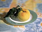 One Whole Peach with Leaves; Plate