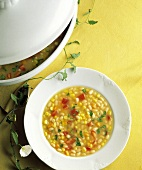 A Bowl of Corn Soup