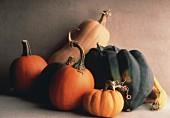 Still Life of Assorted Squash and Pumpkin