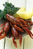 Crayfish in a Bowl with Lemon Wedges