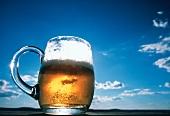 Helles Bier im Glaskrug im Gegenlicht vor blauem Himmel