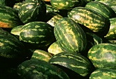 Several Watermelons at a Market