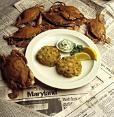 Maryland Crab Cakes; Whole Crabs
