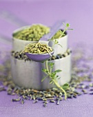 Herbs du Provence Lavender, Thyme, Rosemary and Fennel