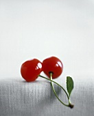 Two red Cherries with Connected Stems and Leaf