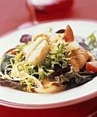 Mixed Green Salad with Fish
