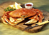Dungeness Crab with Lemon and Cocktail Sauce