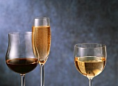 Red White and Sparkling Wines with Blue Background