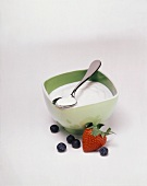 Vanilla Yogurt in a Bowl