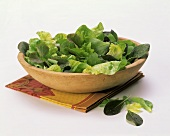 Assorted Lettuce in Bowl