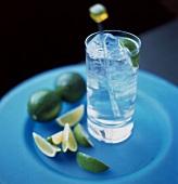Ein Glas Gin-Tonic und einige Limettenschnitze