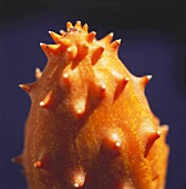 A Horned Melon