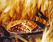 Apple Pie in a Wheat Field
