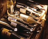 Weinlagerung: Blick in einen privaten Weinkeller