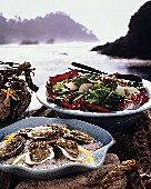 Oysters on the Half Shell with Mesclun Salad by the Ocean