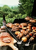 Assorted Foods on the Barbecue
