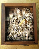 A Drawer Filled with Forks