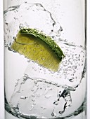 Gin and Tonic with Lime and Ice, Close Up