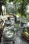Scenic Outdoor Table Setting