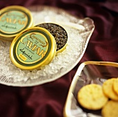 Beluga Caviar in Tins on Ice