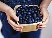 A Basket of Blueberries in Child's Hands