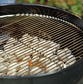 BBQ Grill with Coals