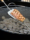 Grilled Salmon on a Spatula; Charcoal
