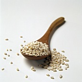 Pearl Barley on a Wooden Spoon