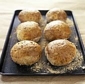 Wholemeal Bread Rolls on a Baking Sheet