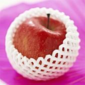 Red apple in polystyrene net