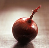 A Single Whole Red Onion