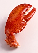 A Lobster Claw